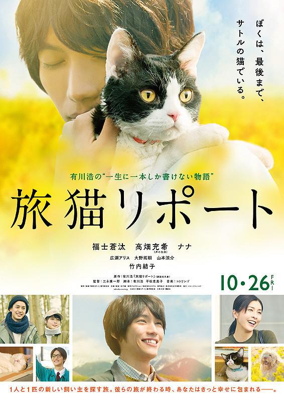 猫好き必見の感動映画『旅猫リポート』(2018)の評価と考察【あらすじ、感想、ネタバレあり】